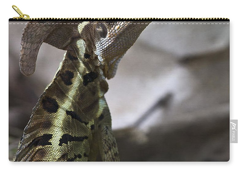 Nina Stavlund Carry-all Pouch featuring the photograph Mr. Basilisk.. by Nina Stavlund
