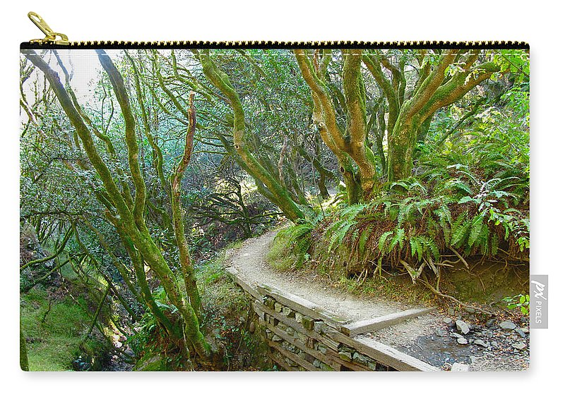 Muir Woods Carry-all Pouch featuring the photograph Curve In The Dipsea by Lexi Heft