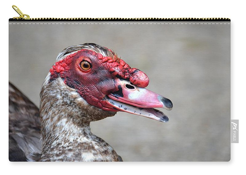Muscovy Talk Carry-all Pouch featuring the photograph Muscovy Talk by Maria Urso