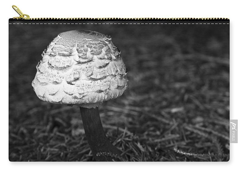 3scape Photos Carry-all Pouch featuring the photograph Mushroom by Adam Romanowicz