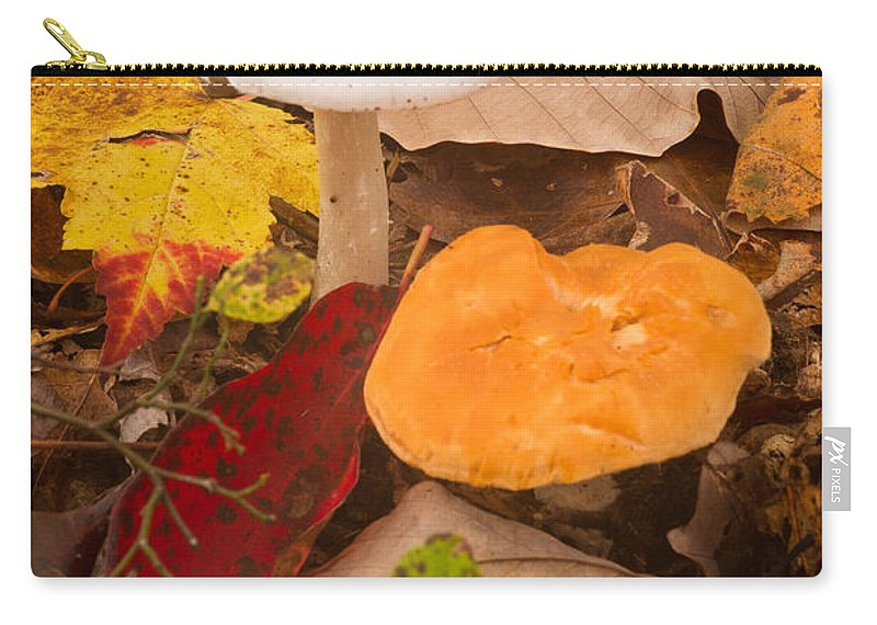 Fungi Carry-all Pouch featuring the photograph Mushroom by Douglas Barnett