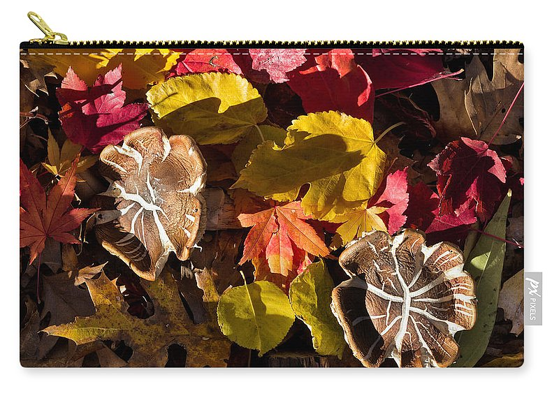 Agaric Carry-all Pouch featuring the photograph Mushrooms In Fall Leaves by Kathleen Bishop