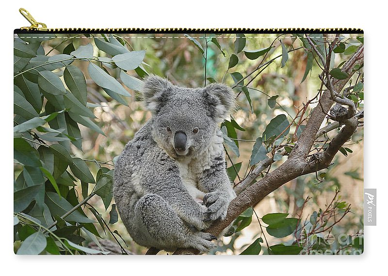 Cute Carry-all Pouch featuring the photograph My Branch by Traci Law