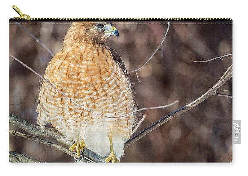 Red Shouldered Hawk Carry-all Pouch featuring the photograph My Good Side by Bill Wakeley