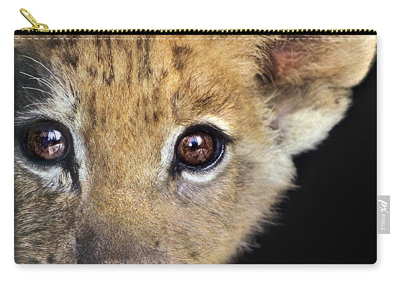 African Lion Carry-all Pouch featuring the photograph My Grandma What Big Eyes You Have African Lion Cub Wildlife Rescue by Dave Welling