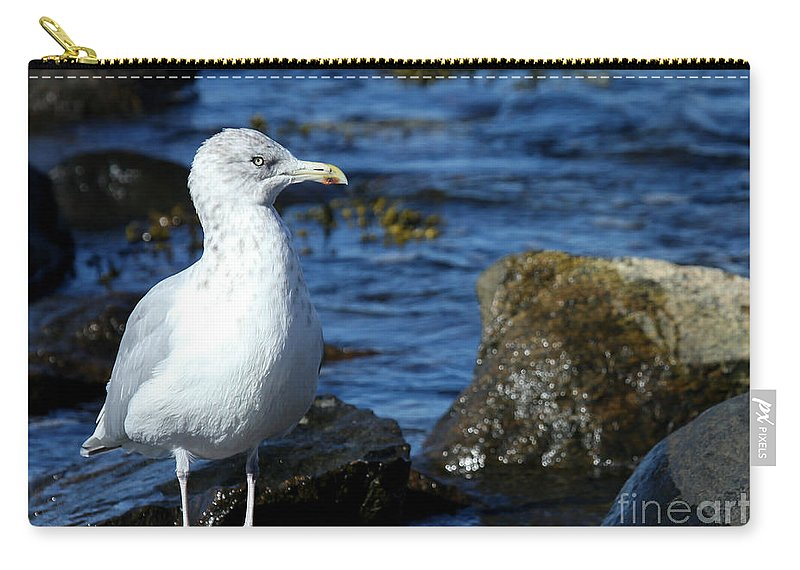 Fall Carry-all Pouch featuring the photograph Mystic Seagull by Sabrina L Ryan
