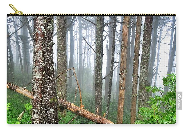 Mystic Carry-all Pouch featuring the photograph Mystic by Skip Hunt
