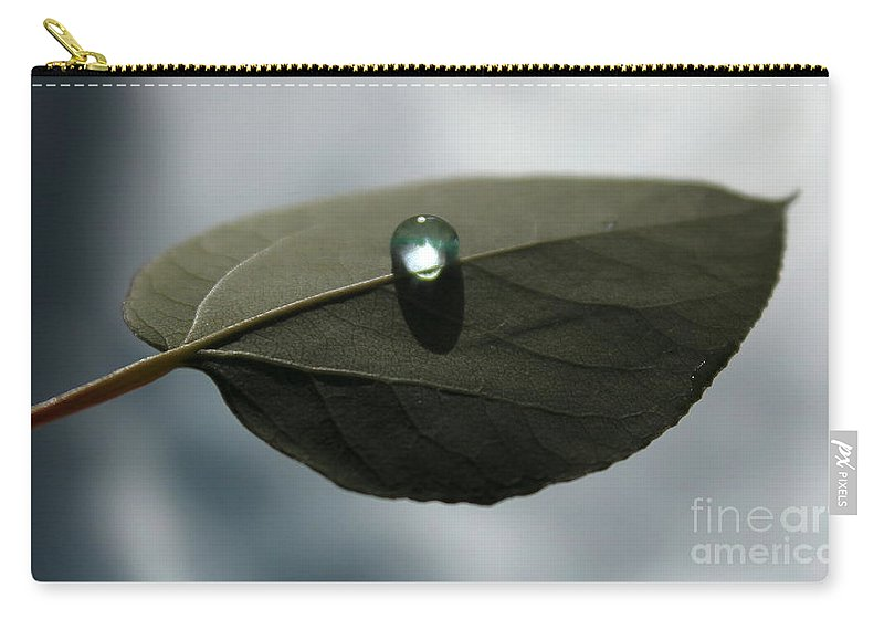 Leaf Carry-all Pouch featuring the photograph Mystical Moments by Krissy Katsimbras