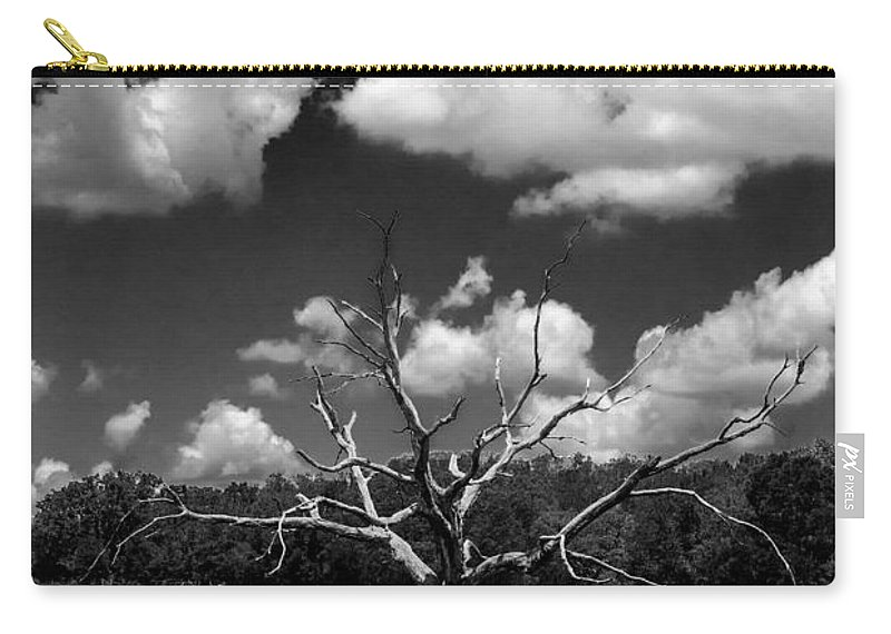 Tree Carry-all Pouch featuring the photograph Naked 2 by Beverly Stapleton