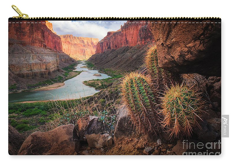 America Carry-all Pouch featuring the photograph Nankoweap Cactus by Inge Johnsson