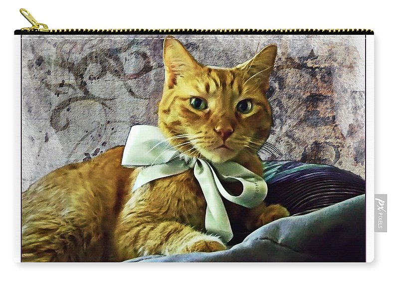 Feline Carry-all Pouch featuring the photograph Napoleon And The Ribbon by Joan Minchak
