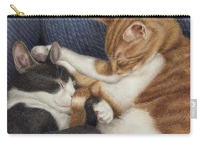 Cats Carry-all Pouch featuring the painting Naptime by Pat Erickson