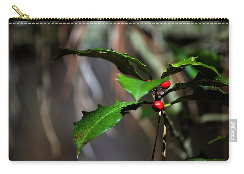 Holly In The Wild Carry-all Pouch featuring the photograph Natural Holly Decor by Bill Swartwout Fine Art Photography