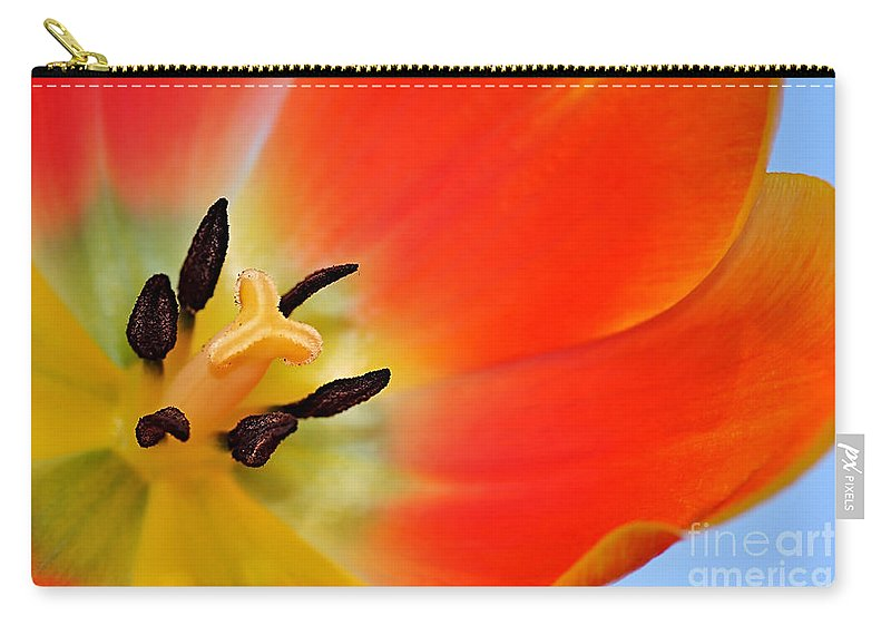 Photography Carry-all Pouch featuring the photograph Nature's Amazing Colors by Kaye Menner