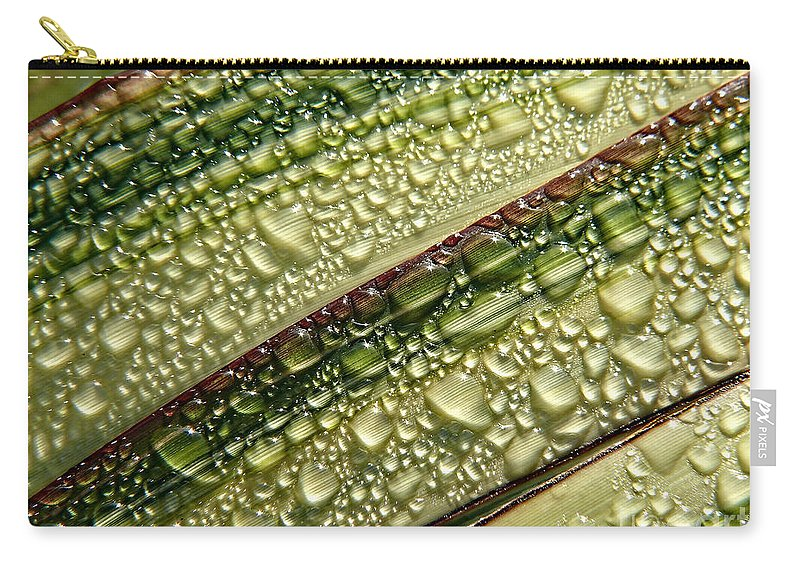 Variegated Leaves Carry-all Pouch featuring the photograph Nature's Colours by Susie Peek