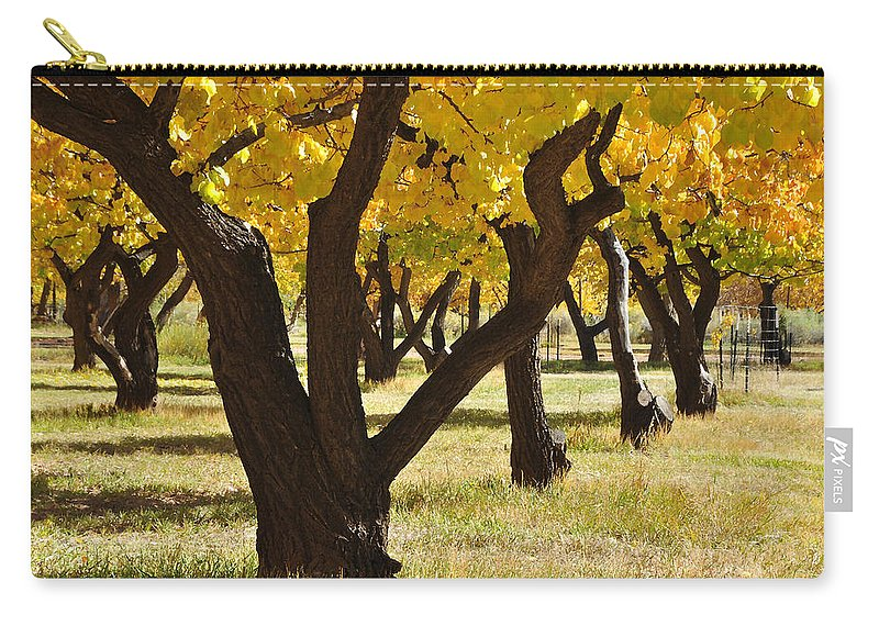 Canvas Prints Carry-all Pouch featuring the photograph Natures Gold by Wendy Elliott