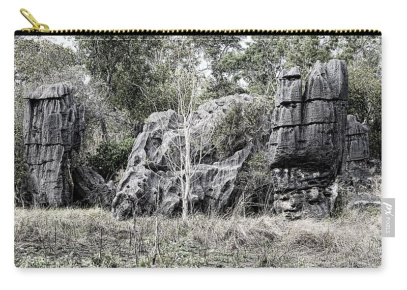 Nature's Statues Carry-all Pouch featuring the photograph Nature's Statues by Douglas Barnard