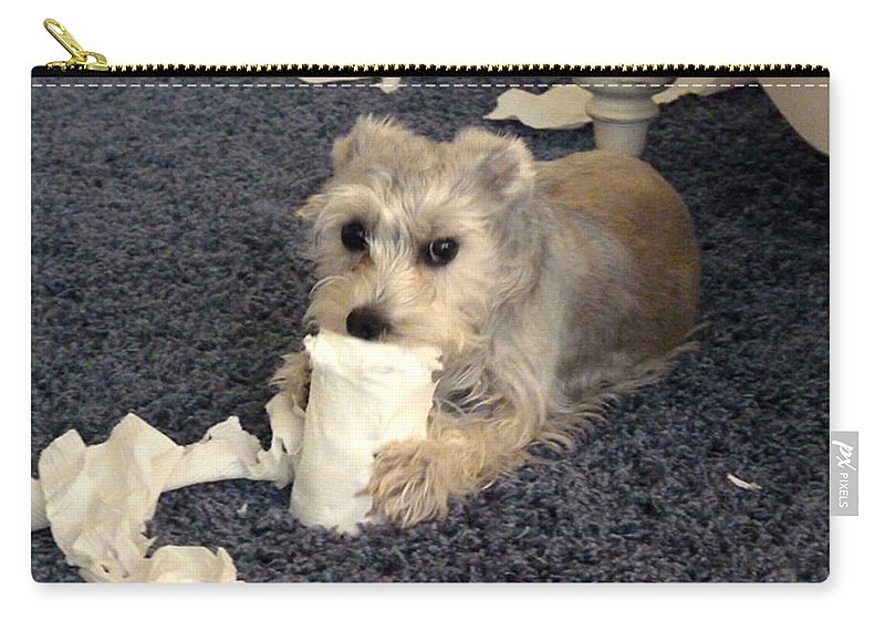 Dog Carry-all Pouch featuring the photograph Naughty Schnauzer by Carla Parris