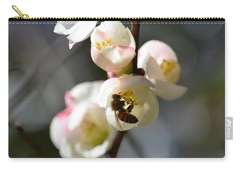 Nectar Hunting In Spring 2013 Carry-all Pouch featuring the photograph Nectar Hunting In Spring 2013 by Maria Urso