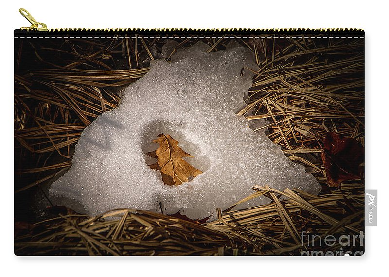 Leaf Carry-all Pouch featuring the photograph Nesting Leaf by Grace Grogan