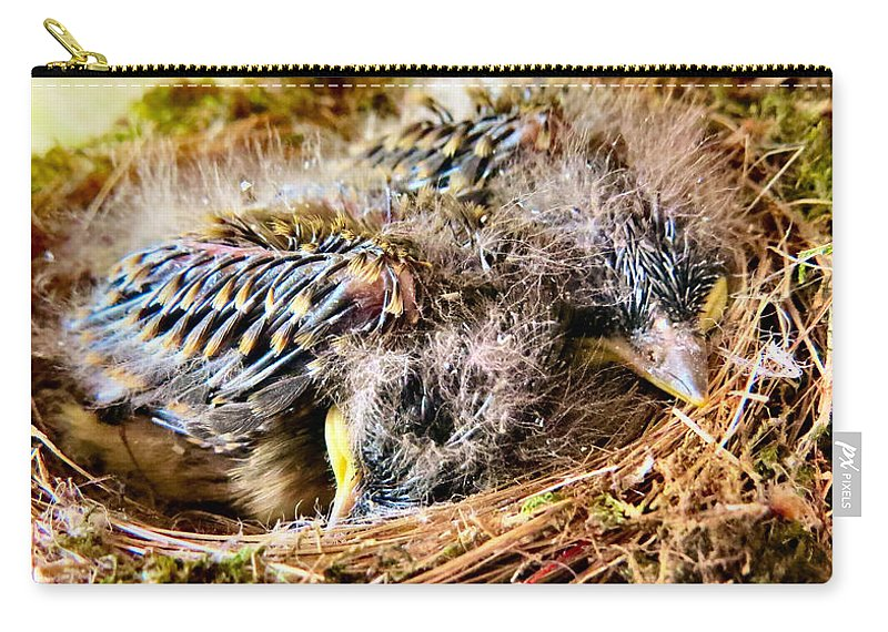Bird Carry-all Pouch featuring the photograph Nestled by Art Dingo