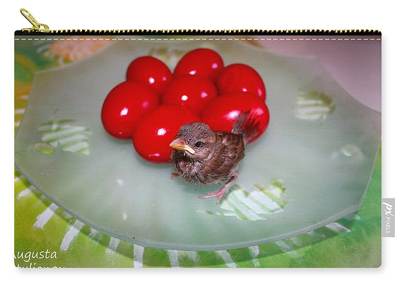 Augusta Stylianou Carry-all Pouch featuring the photograph Nestling And Red Eggs by Augusta Stylianou