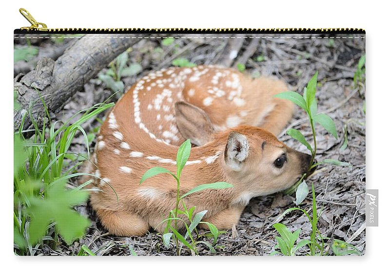 Animal Carry-all Pouch featuring the photograph New Born Fawn by Bonfire Photography
