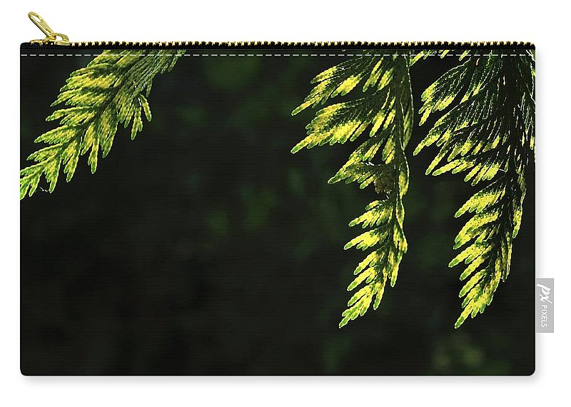 New Carry-all Pouch featuring the photograph New Growth 25866 by Jerry Sodorff