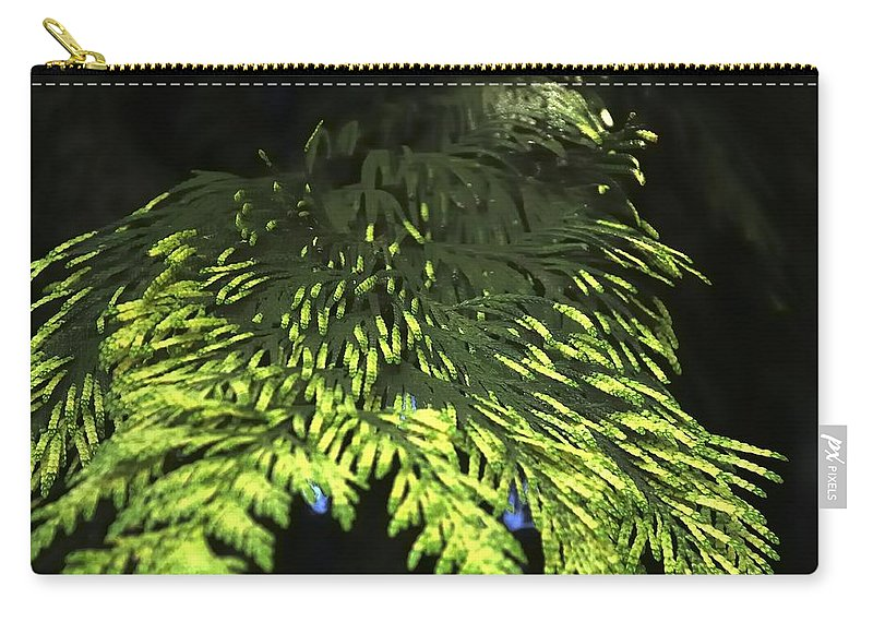 New Carry-all Pouch featuring the photograph New Growth 25871 2 by Jerry Sodorff