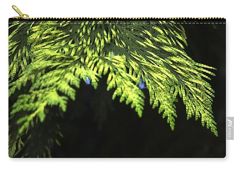 New Carry-all Pouch featuring the photograph New Growth 25871 by Jerry Sodorff