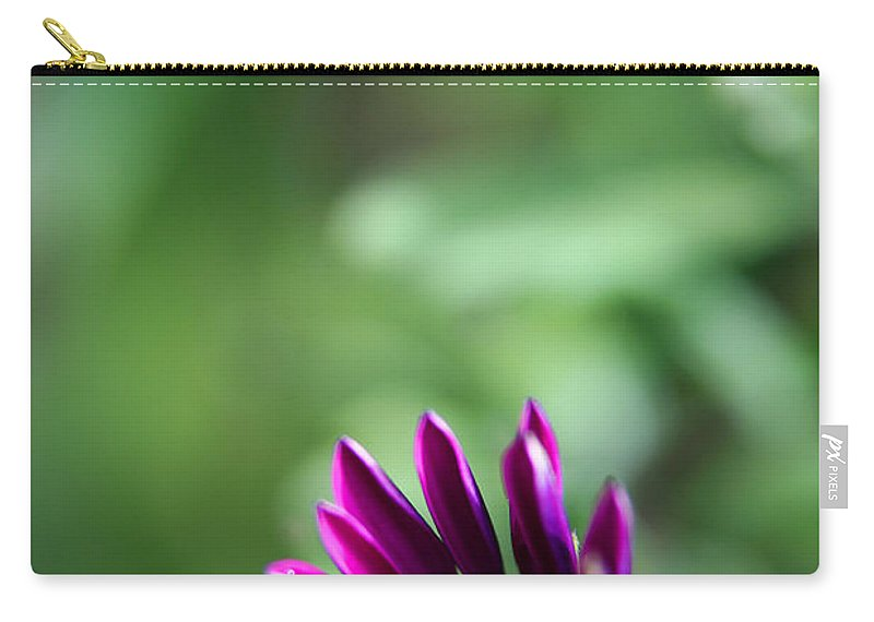 Flower Carry-all Pouch featuring the photograph New Life by Karol Livote