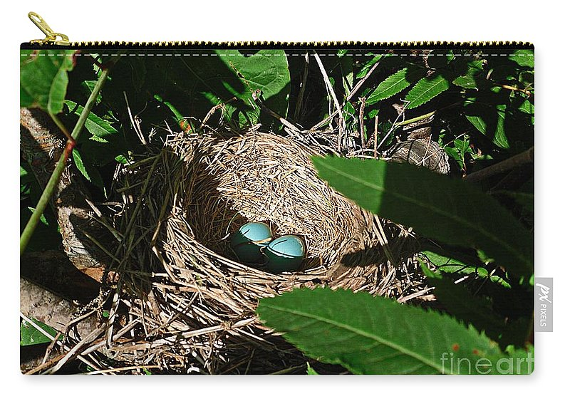 Robins Nest Carry-all Pouch featuring the photograph New Life - Robin's Nest by Barbara Griffin