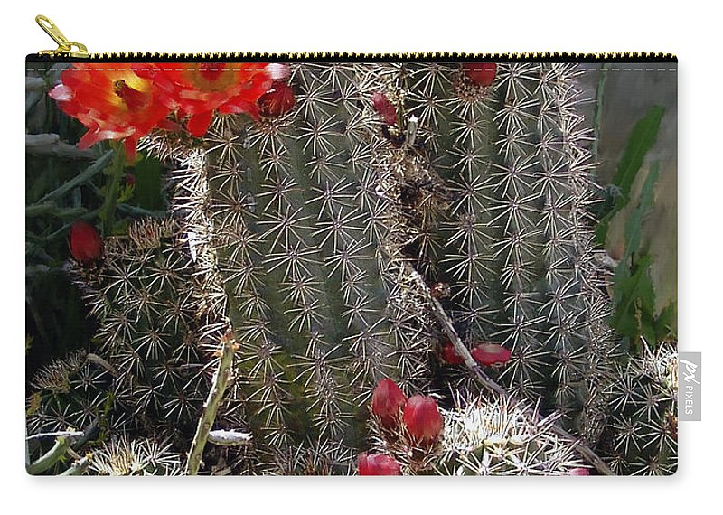 Cactus Carry-all Pouch featuring the photograph New Mexico Cactus by Kurt Van Wagner