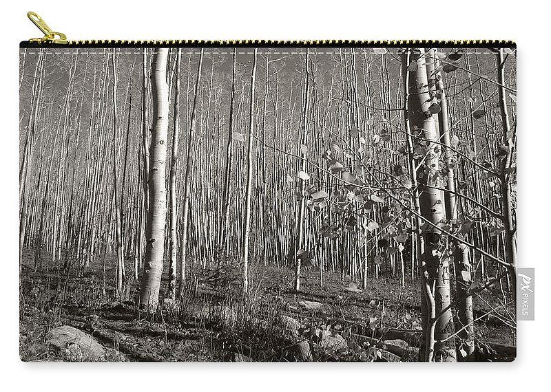 Landscape Carry-all Pouch featuring the photograph New Mexico Series - Bare Autumn Bw by Kathleen Grace