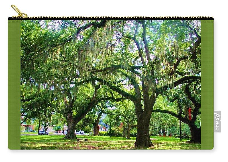 New Orleans City Park Carry-all Pouch featuring the photograph New Orleans City Park - Live Oak by Deborah Lacoste