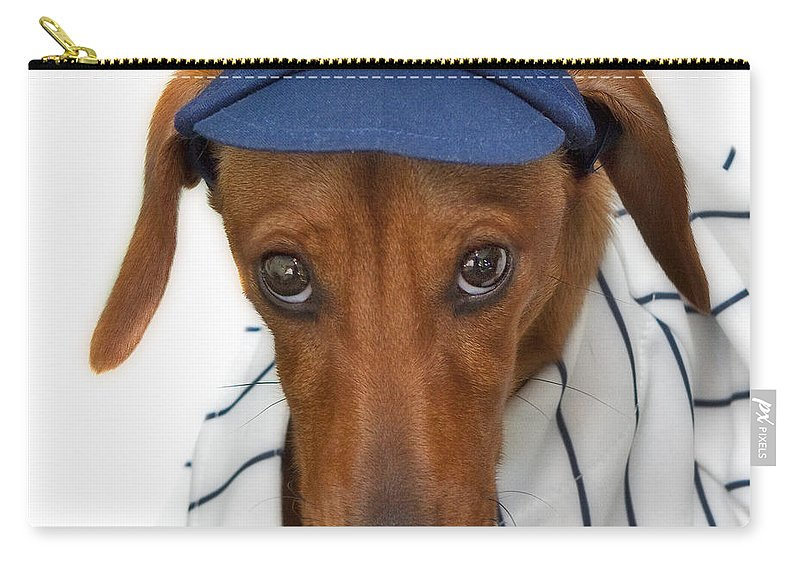 New York Carry-all Pouch featuring the photograph New York Yankee Hotdog by Susan Candelario