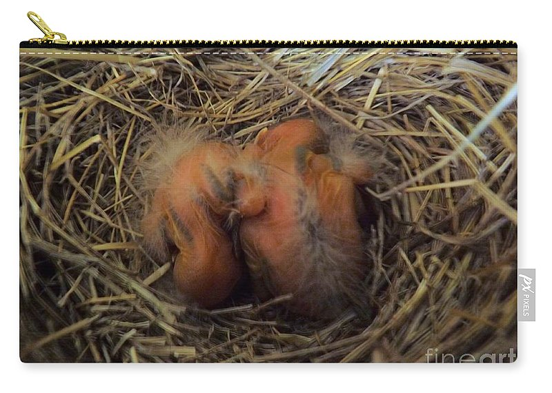 Bird Carry-all Pouch featuring the photograph Newly Born by Robyn King