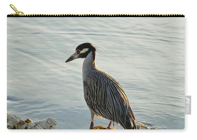 Night Heron Carry-all Pouch featuring the photograph Night Heron by Cynthia Croal