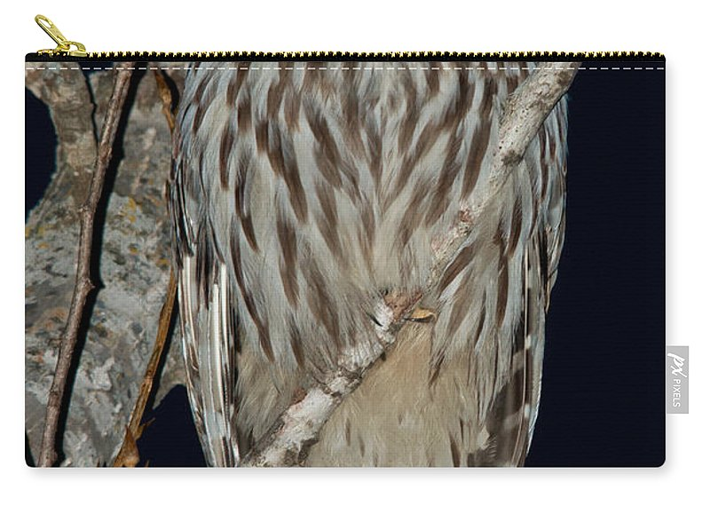 Owls Carry-all Pouch featuring the photograph Night Owl by Cheryl Baxter