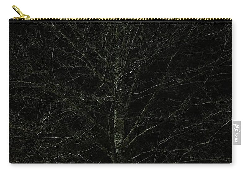 Nigh Time Carry-all Pouch featuring the photograph Night Tree by Joseph Yarbrough