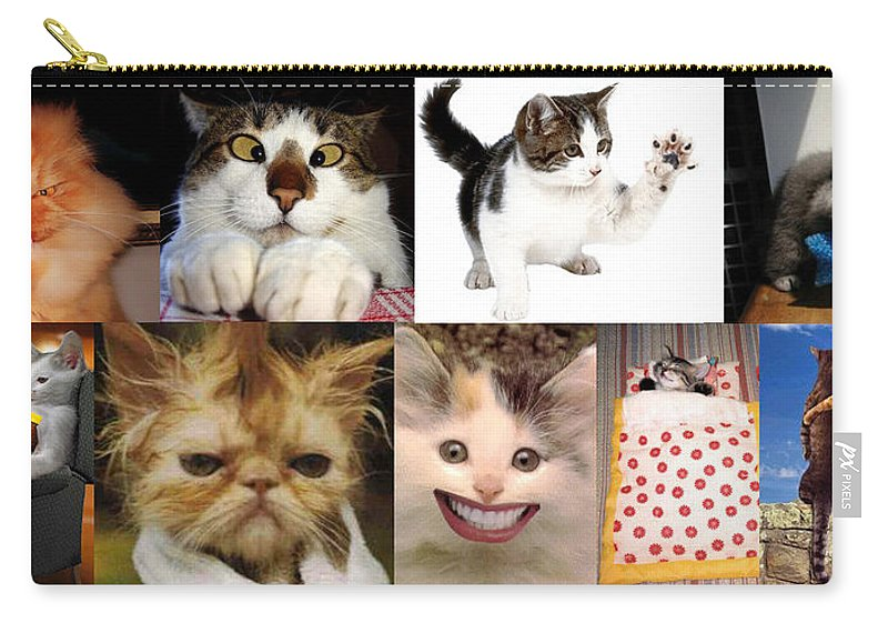 Carry-all Pouch featuring the photograph Nine Lives And Mood Swings by Peter Piatt