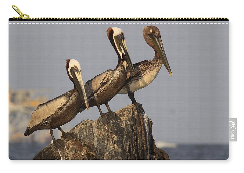 Pelican Carry-all Pouch featuring the photograph No More Room - Pelican - Gulf Of Mexici by Travis Truelove