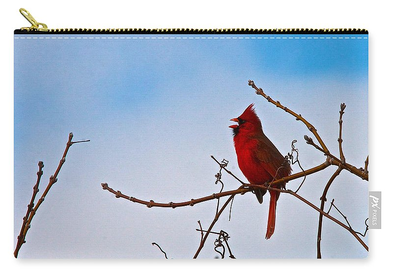 Songbird Carry-all Pouch featuring the photograph Northern Cardinal by Tim Schmidt