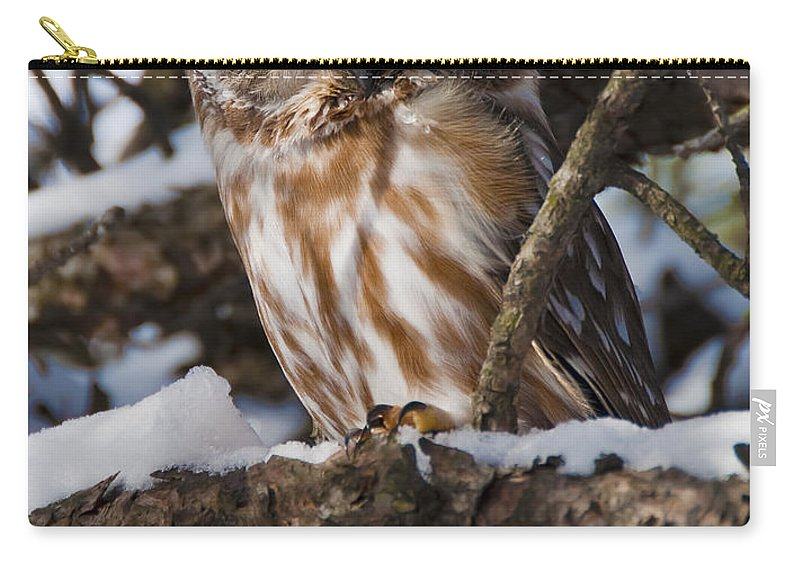 Festblues Carry-all Pouch featuring the photograph Northern Saw-whet Owl.. by Nina Stavlund