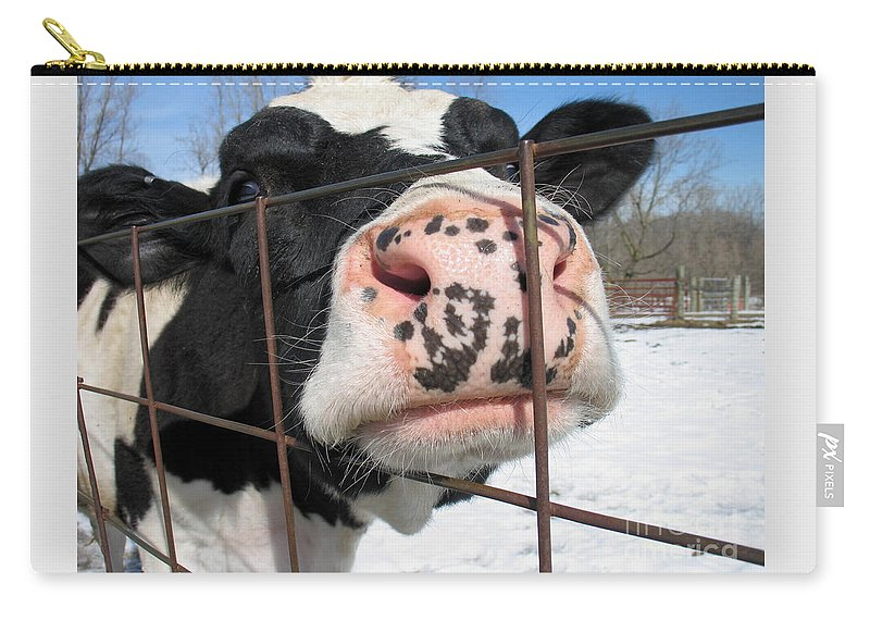 Cow Carry-all Pouch featuring the photograph Nosy by Ann Horn