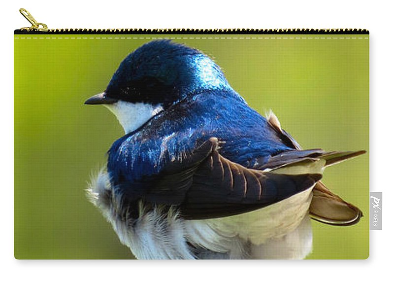 Tree Carry-all Pouch featuring the photograph Not Speaking To You by Art Dingo