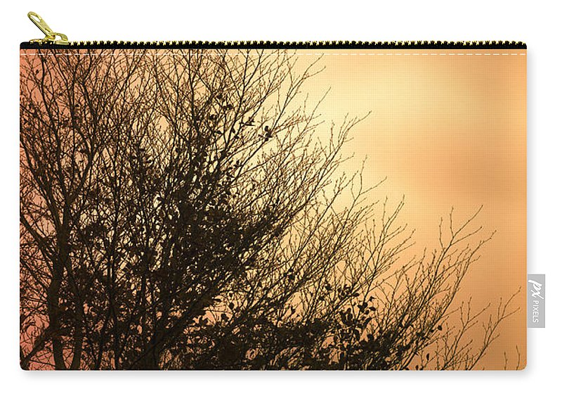 Tree Carry-all Pouch featuring the photograph November Memories by Jan Bickerton