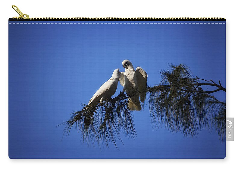 Corellas Carry-all Pouch featuring the photograph Now You Listen To Me by Douglas Barnard