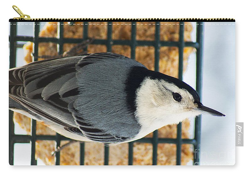 White Carry-all Pouch featuring the photograph Nuthatch by Joe Geraci