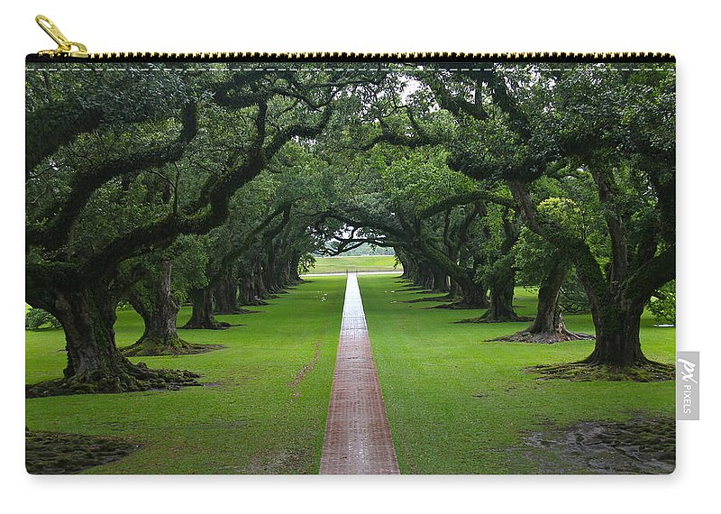 Tree Carry-all Pouch featuring the photograph Oak Alley by Denise Mazzocco